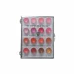 Lip Rogue Palette 16 Colors